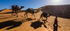 Rutas Nuevas Marruecos Trekking